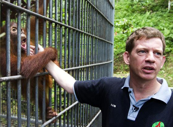 Orangutan conservationist active in Sumatra honored by Queen Elizabeth