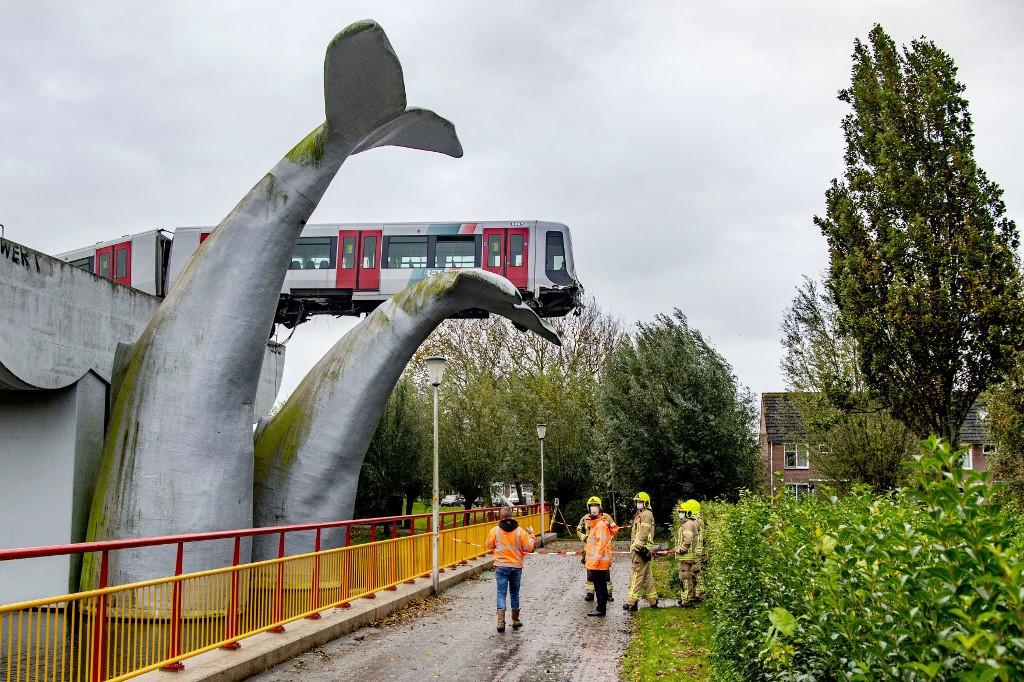 What a tail: Whale sculpture saves runaway Dutch train