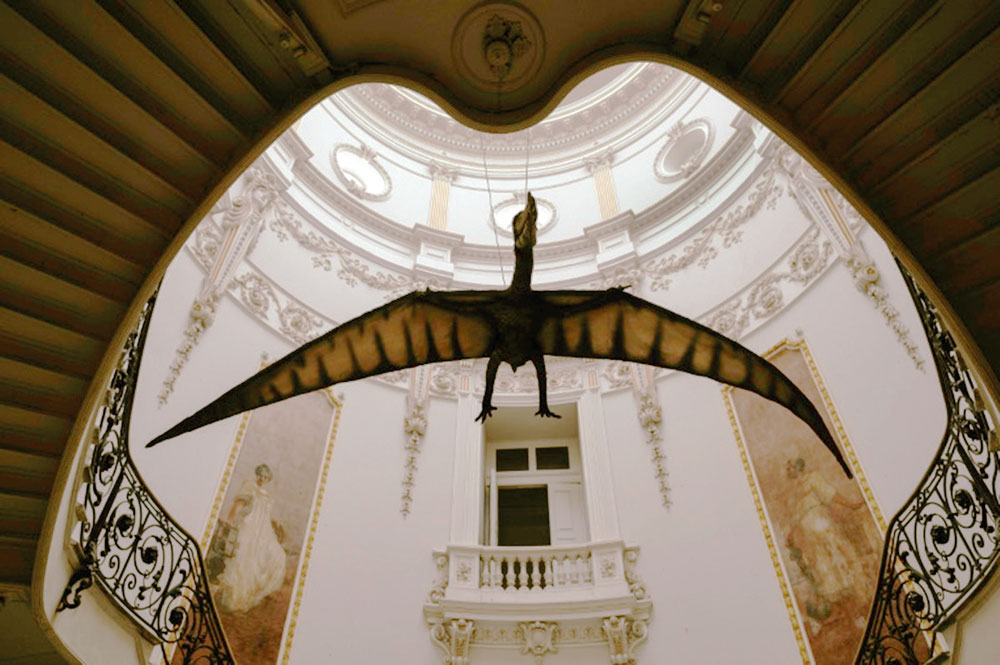 Research tracks how pterosaurs mastered the primaeval skies