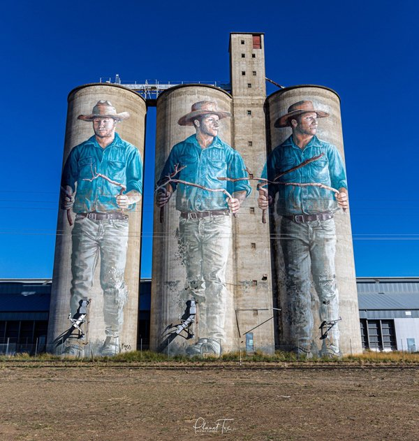 Australian artist paints huge water diviner on silos