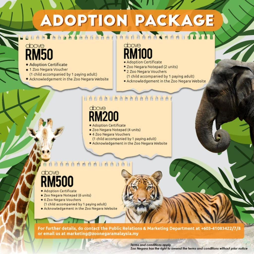 You Can Now Adopt Zoo Negara Animals On Shopee And Lazada