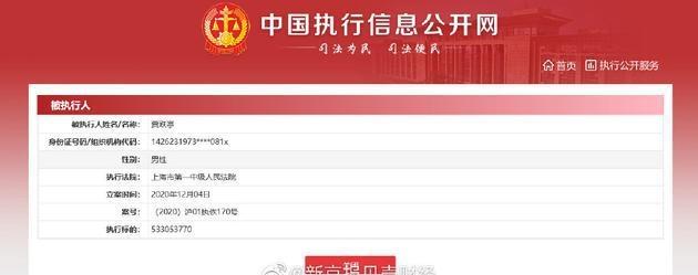 贾跃亭再成被执行人 执行标的约5.33亿元