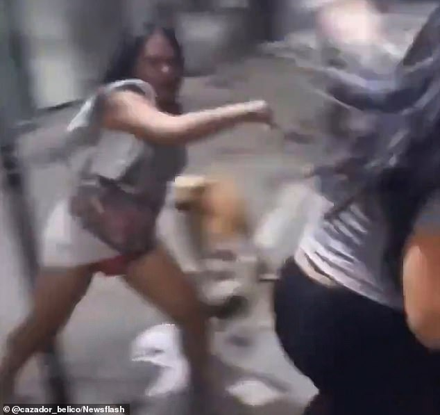 Bottom's pup! Stray dog pulls down woman's leggings and exposes her rear as she brawls with a rival in the street