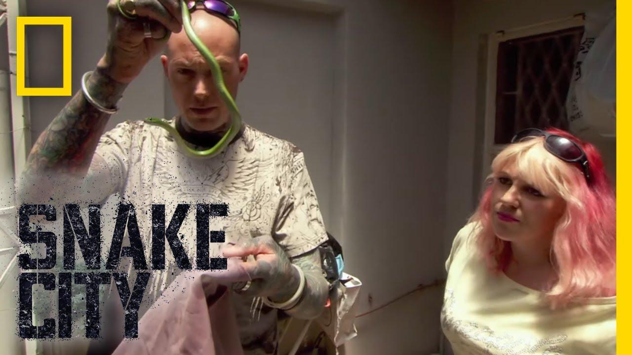 Mamba in My Closet! (Full Episode)   Snake City