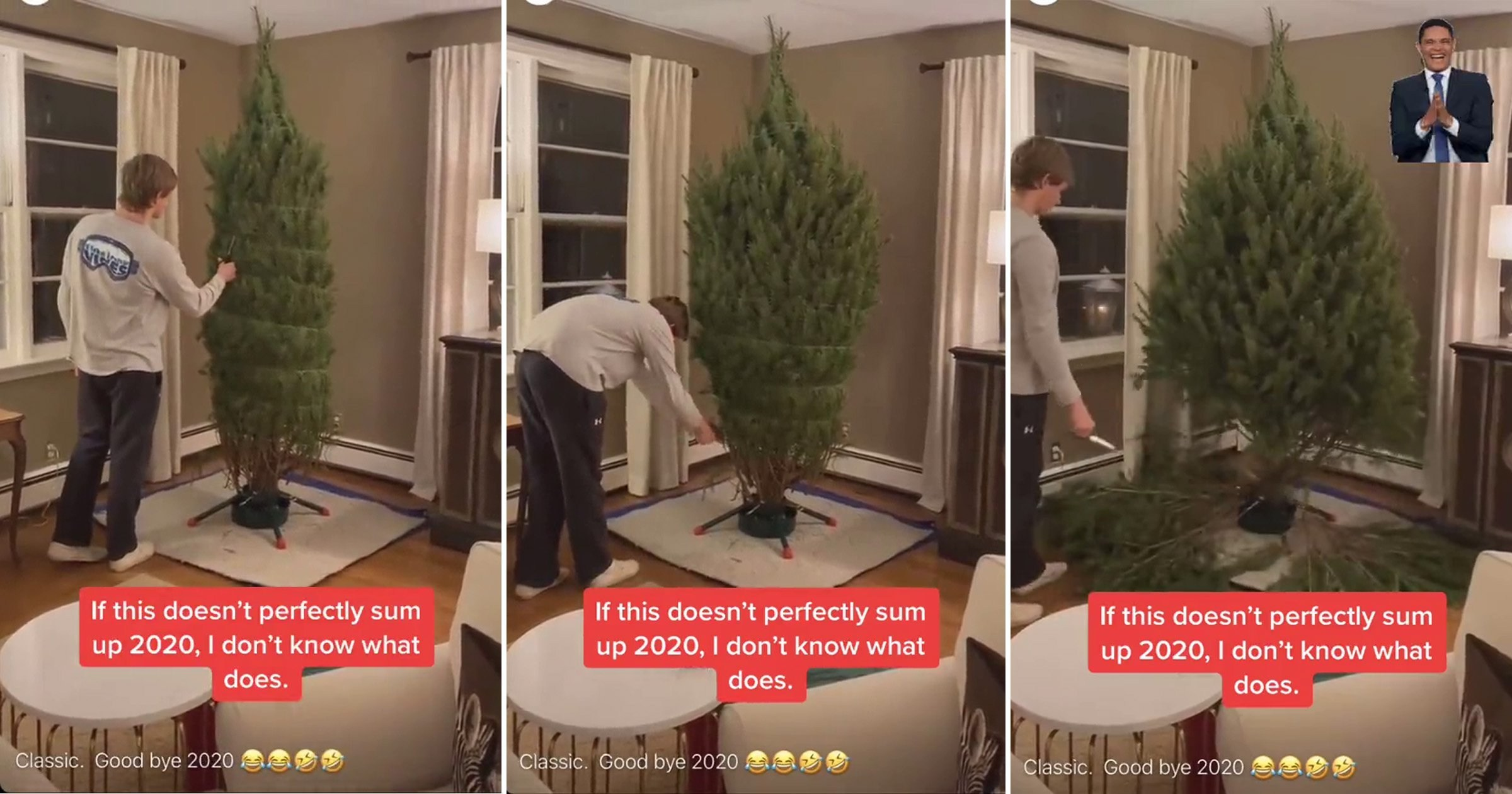 'World's worst' Christmas tree falls apart instantly and 'sums up 2020'