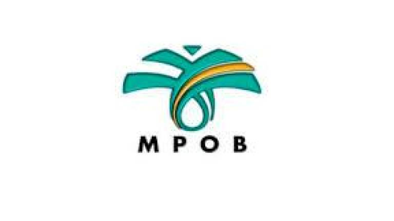 Govt may earn palm oil windfall profit levy of over RM500 mln in 2021 - MPOB