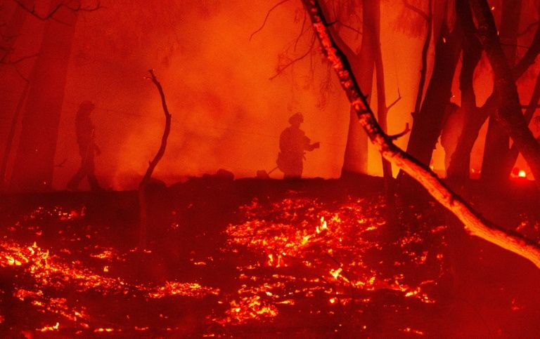 Below-average fires in 2020 despite monster blazes: eu