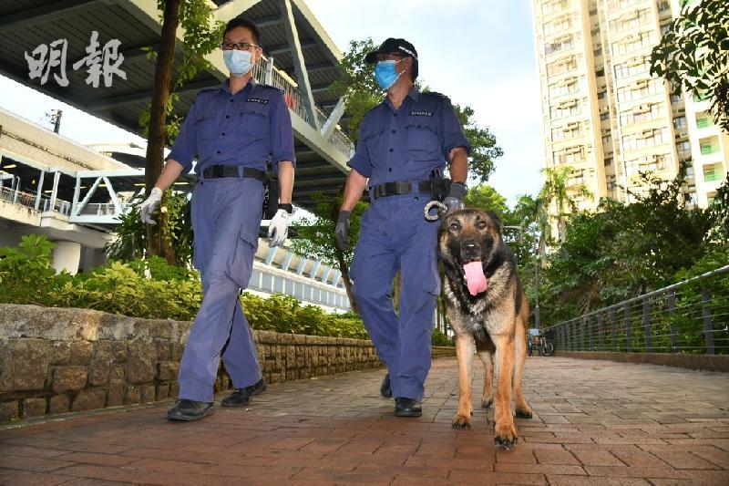 领犬员确诊冠病 警犬也检测阳性