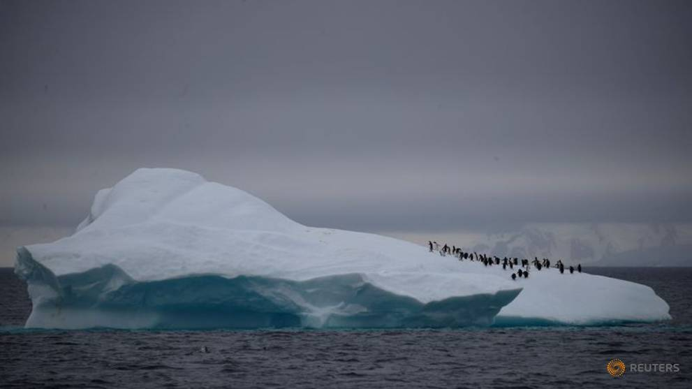 Antarctica rocked by 30,000 tremors in three months, Chilean scientists say