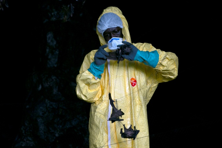 Virus hunters delve Gabon caves in search of next threat