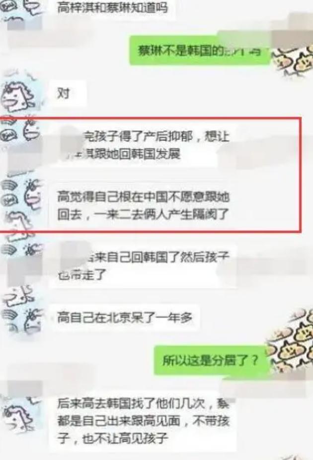 网曝蔡琳高梓淇离婚内幕:女方患上产后抑郁症