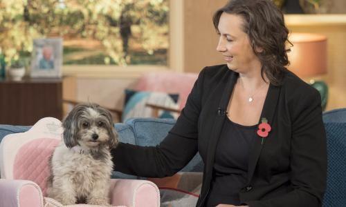 UK pet bereavement helplines report big rise in calls during Covid