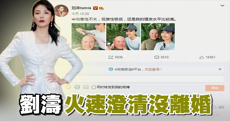 刘涛 火速澄清沒离婚