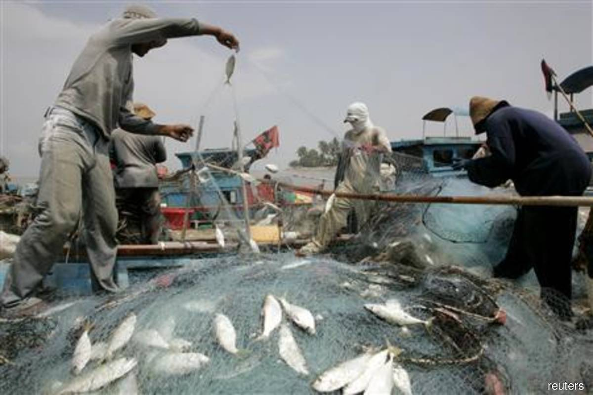 Govt allows resumption of small scale fishing activities