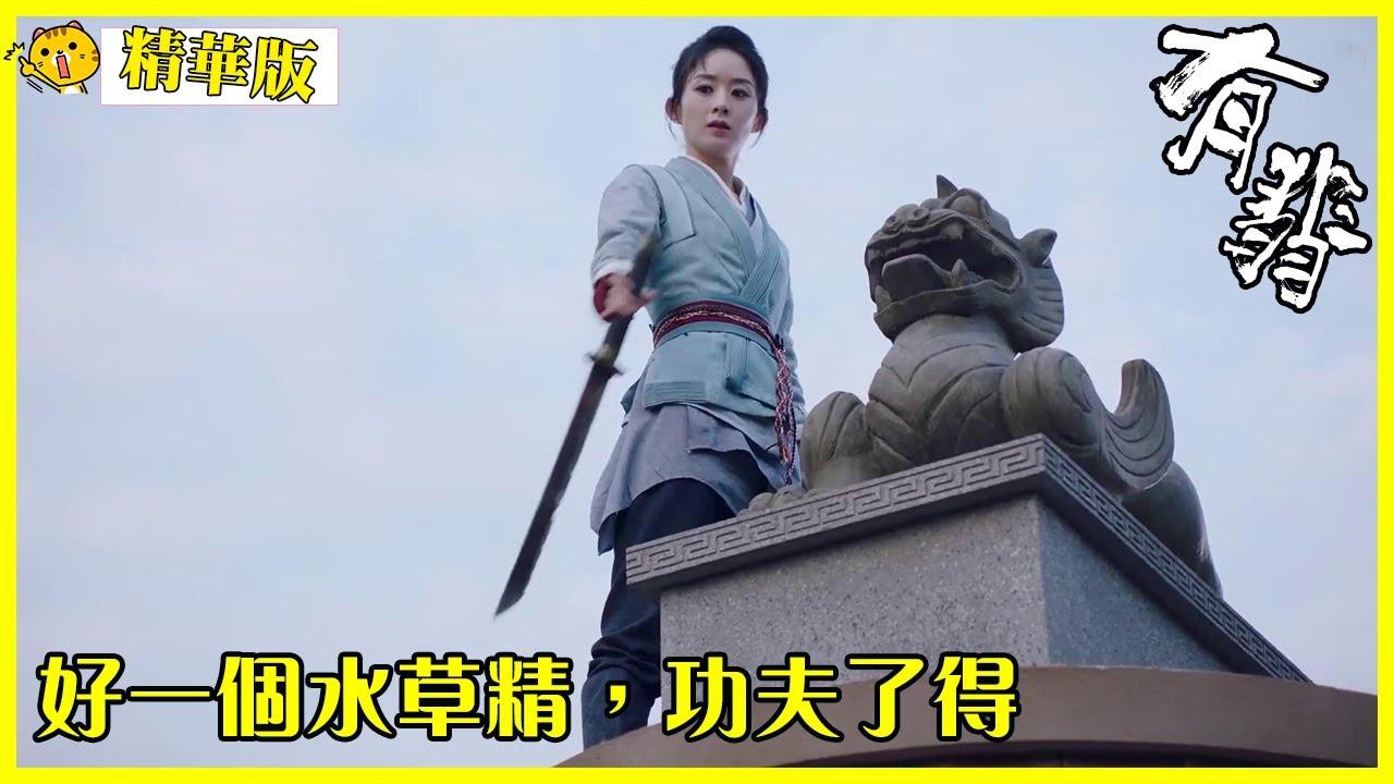 「有翡」精华版:水草精赢了老妈,终于可以离开四十八寨!