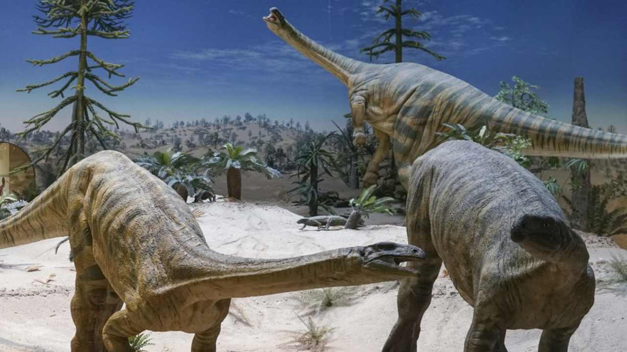 Dinosaur migration was partly delayed by climate, herbivores took longer to traverse North: Study