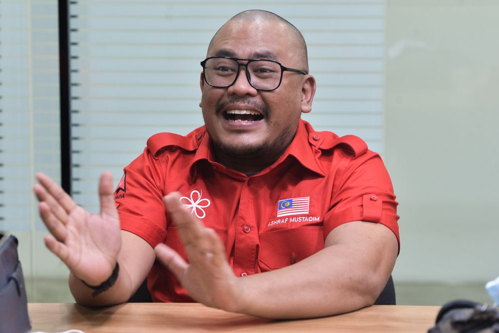 Armada info chief: Umno can't claim to be sole party for Malays, needs strong pact with Bersatu, PAS