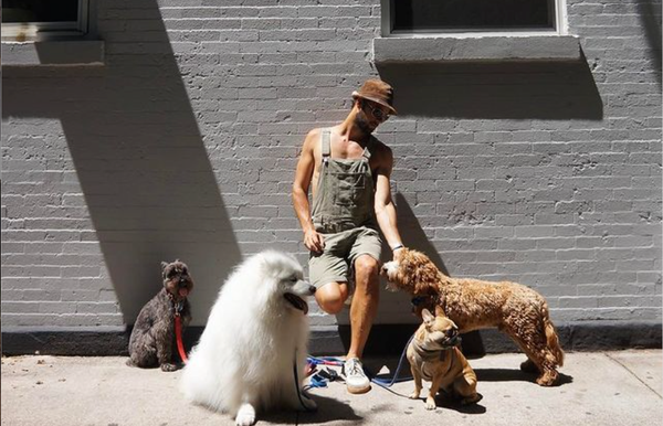 Lady Gaga's Dog Walker Recalls Being Shot and Cradling 'Guardian Angel' Dog
