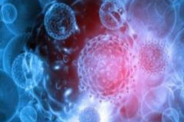 New research on drugs for cancer