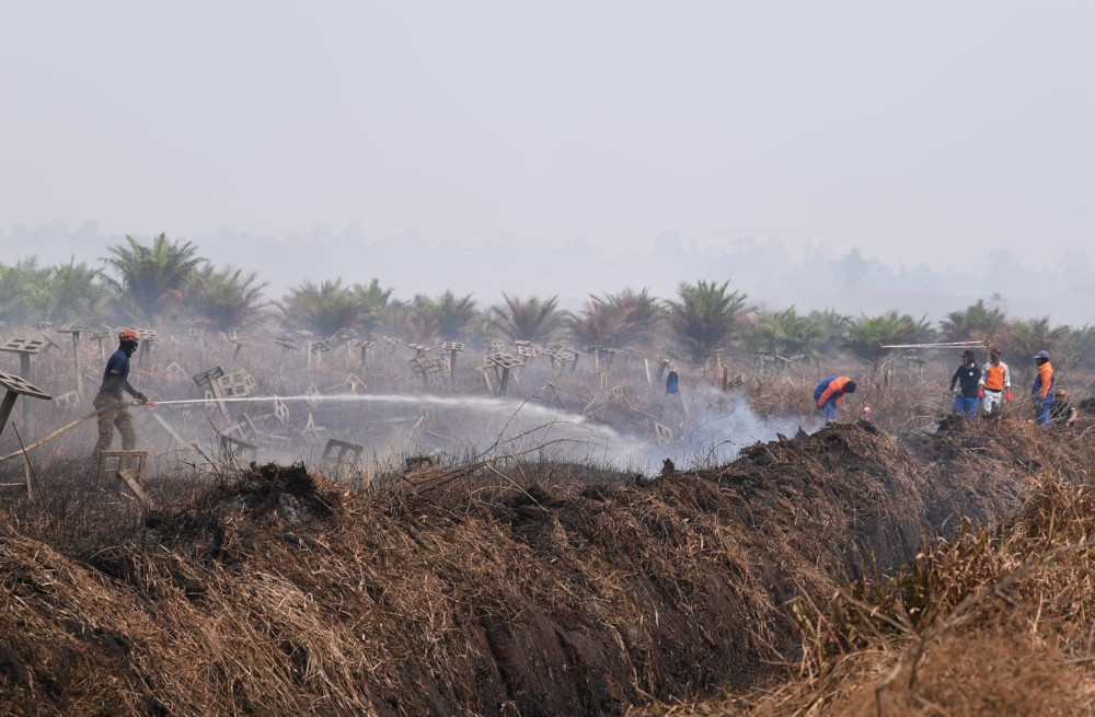 Selangor Fire and Rescue Dept: Five more days to extinguish Kuala Langat Selatan forest fire