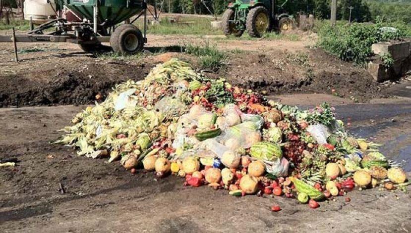 联合国报告:2019年全球浪费食品超9亿吨