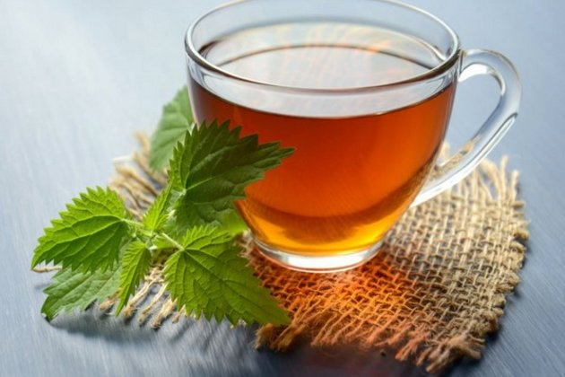 Green tea beneficial for children with Down syndrome