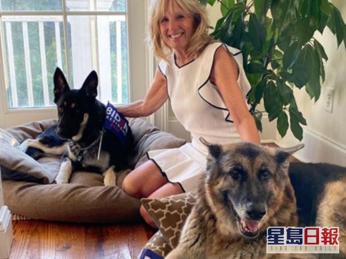 咬白宫职员闯祸 拜登两爱犬被送回乡