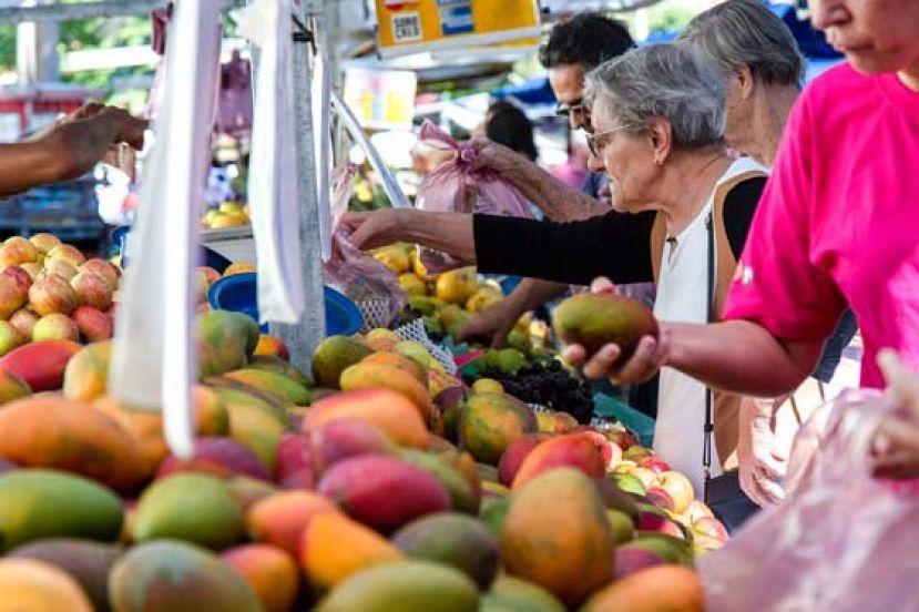 报告:粮食体系在全球温室气体排放量中占比超过三分之一