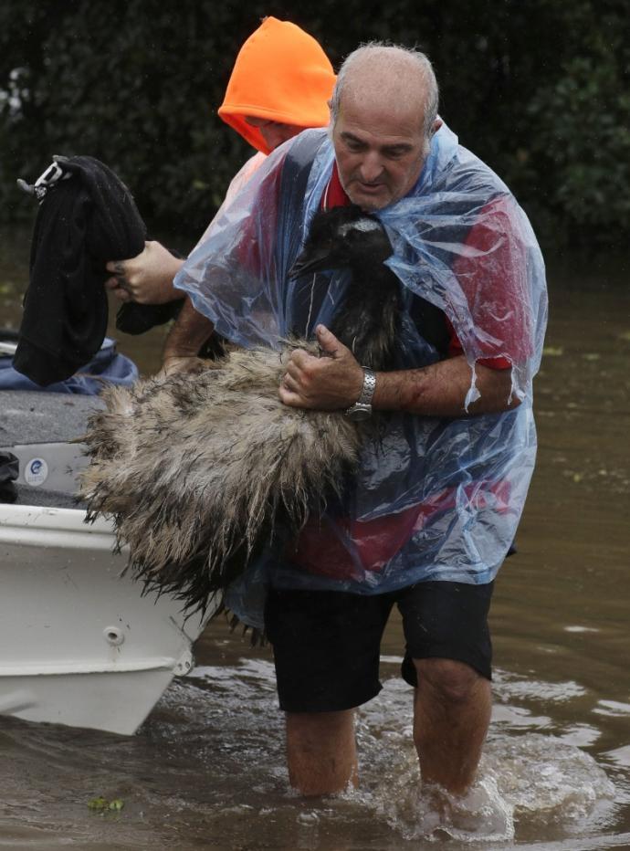再撤1.5万人 澳洲东南部水灾续扩大