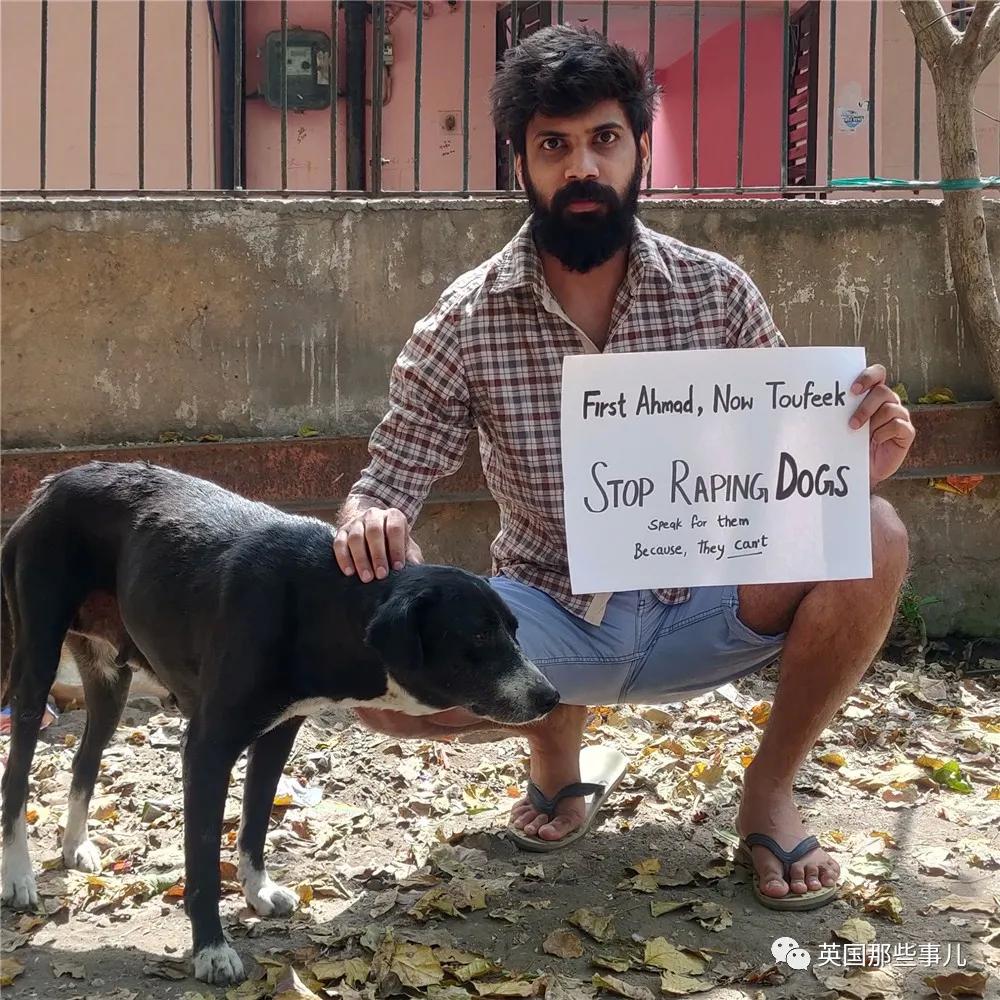 印度67岁老汉性侵30多只流浪狗,被捕后狡辩:狗没反对,不算犯罪!(组图)
