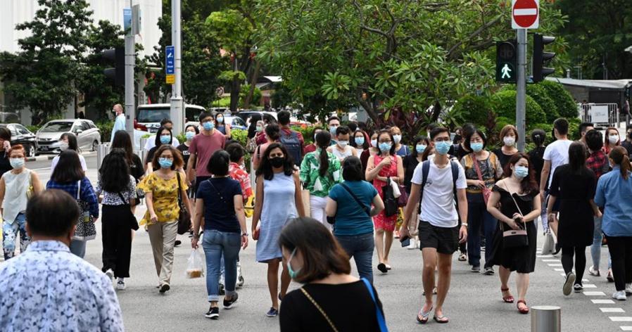 【新冠肺炎】新加坡24确诊 皆境外输入