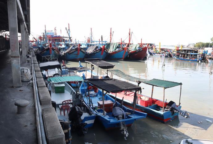 农长:缺竞争力 大马金枪鱼码头需提升