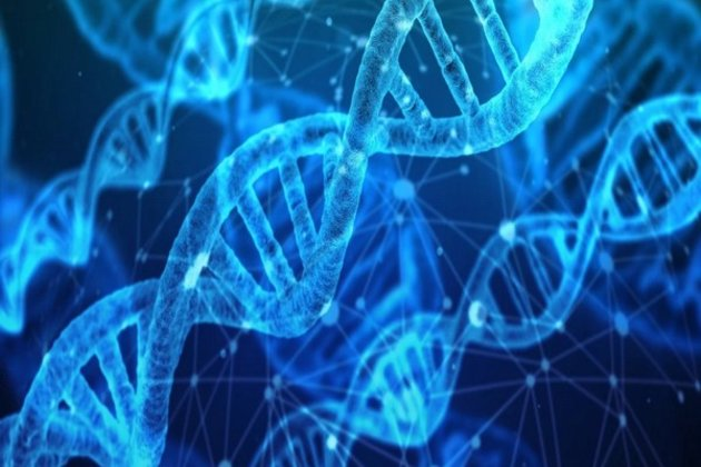 Study reveals genetic link between depression and anxiety