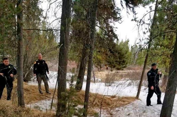 Grizzly Bear Fatally Mauls a Backcountry Guide Near Yellowstone Park