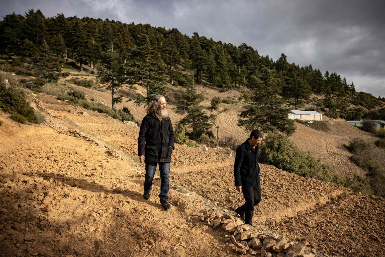 Morocco looks to fear-free hashish farms