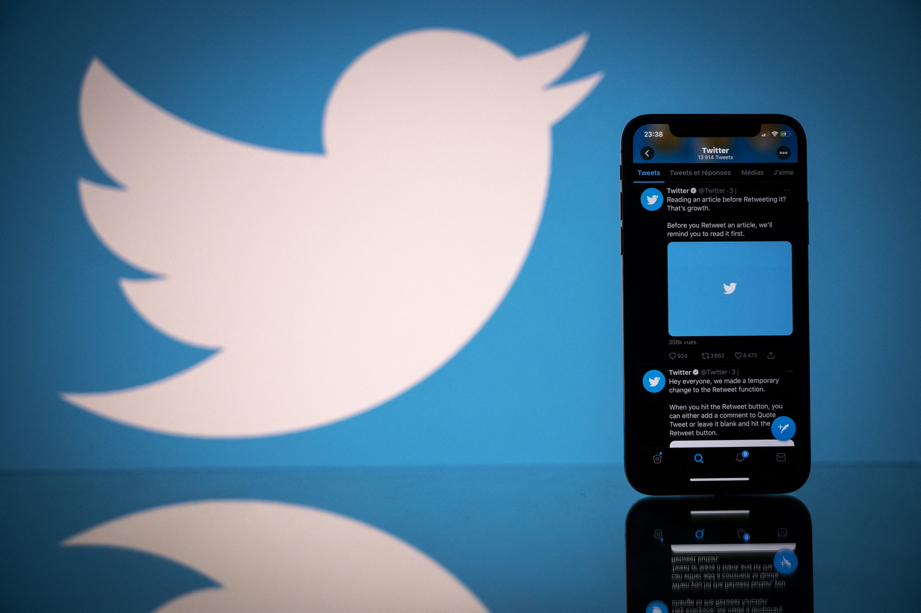 Ameronothrus twitter: New bug discovery proves mite of Twitter