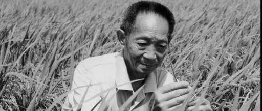 袁隆平去世才29天,这帮明星就开始出来恶心人了