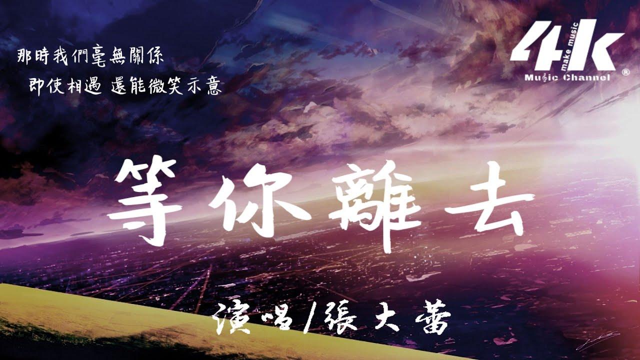 张大蕾 - 等你离去【高音质|动态歌词Lyrics】♫『等时间的雨沖洗记忆,让我不再爱你。』