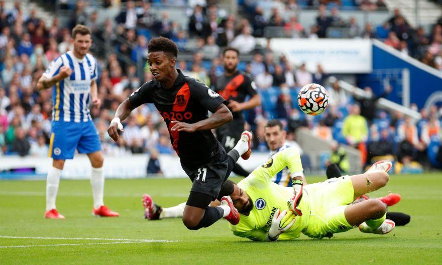 Football: Gray strikes as clinical Everton sink Brighton